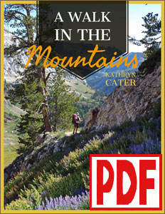 A Walk in the Mountains by Kathryn Cater PDF Download